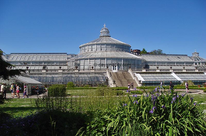 Botanical Gardens (Botanisk Have) - Copenhagen