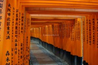 Kyoto - Fushimi-Inari Taisha Shrine